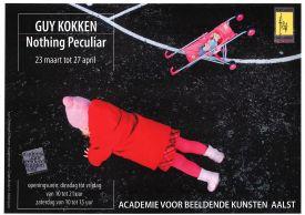 Tentoonstelling / Nothing Peculiar / Guy Kokken
